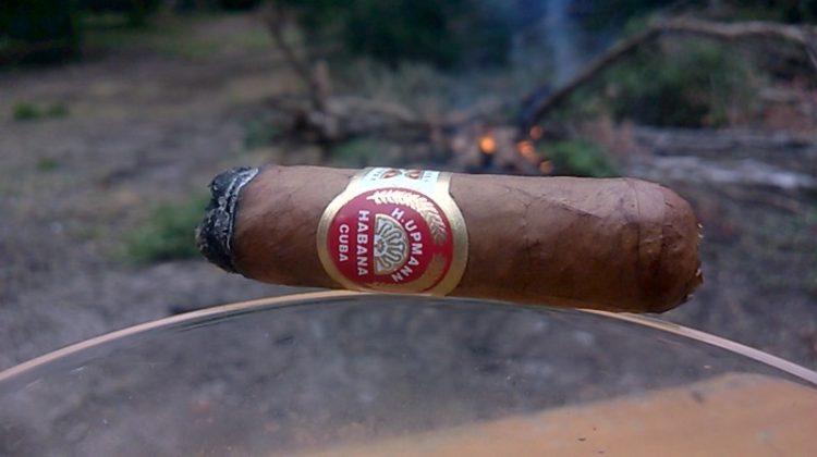 H. Upmann Petite Coronas, half smoked