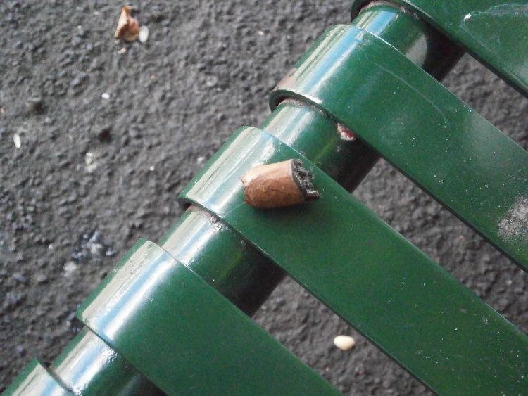 Montecristo B Compay Centennial Humidor nub, on a park bench