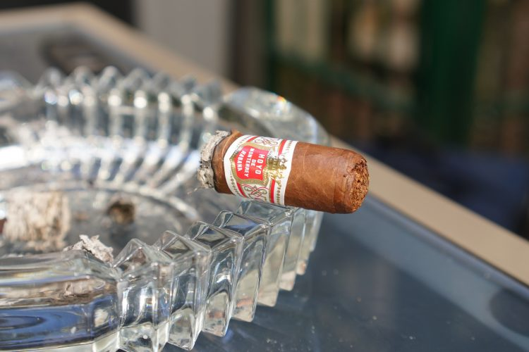 Hoyo de Monterrey Petit Robustos, the final chunk.
