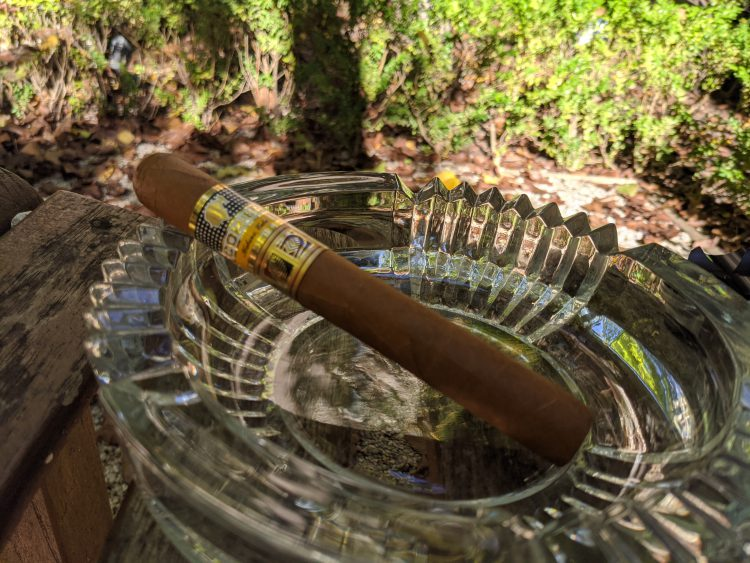 Cohiba Novedosos unlit in the afternoon sun.