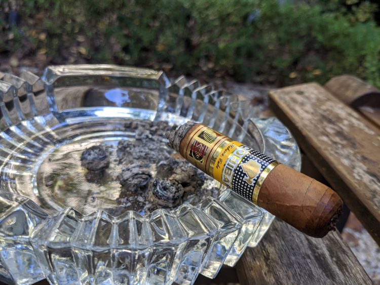 Cohiba Novedosos, burnt to the bands.